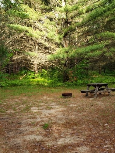 Kalkaska Michigan Camping Kalkaska Michigan Camp Grounds